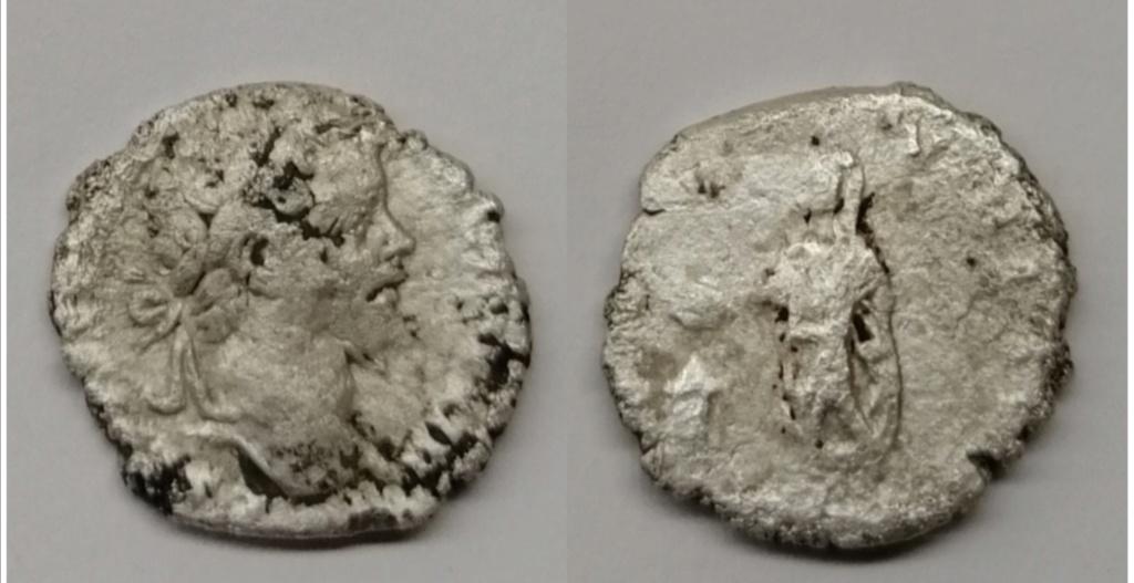 Denario de Septimio Severo. VOTA SVSCEPTA XX. Emperador a izq. Roma Img_2092