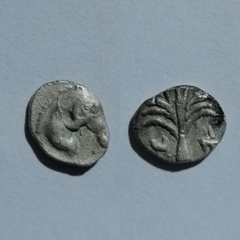 1/12 de shekel hispano-cartaginés Photog16