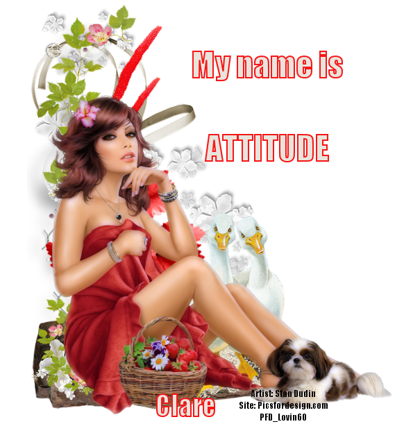 STRUT YOUR ATTITUDE - Page 3 Attit249