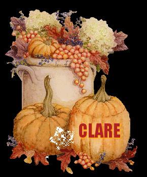 THEME OF THE DAY Autumn33