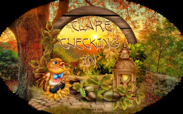 NOVEMBER CHECKING IN - Page 4 Checki35
