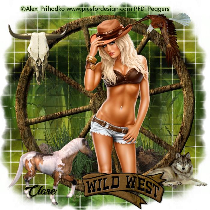 COWBOY/COWGIRL TAGS SHOW OFF Cowboy34