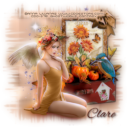 ANGELS/FAIRIES TAGS Fairya18