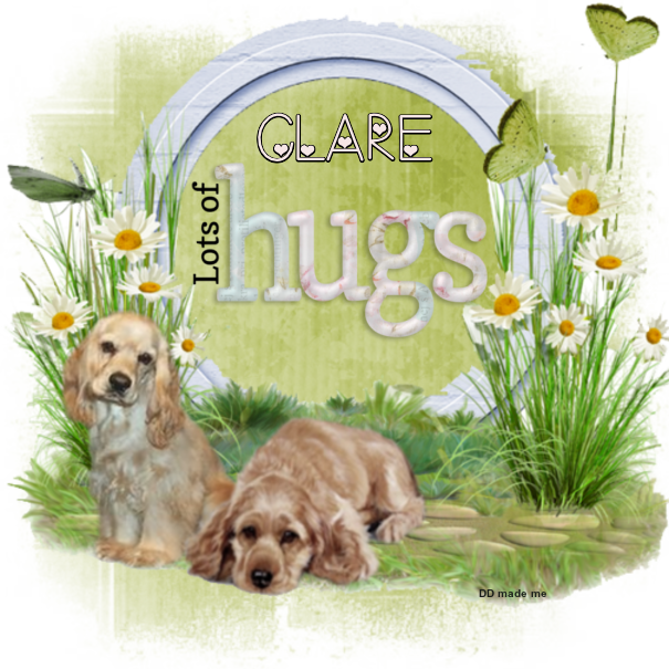 HUGS TO THE GROUP - Page 2 Hugs_d34