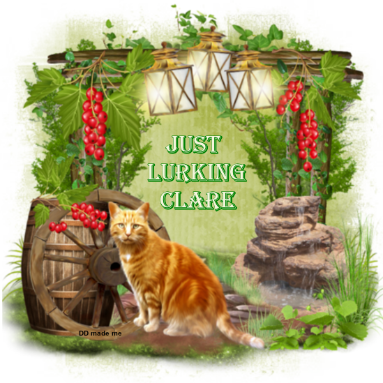 ARE YOU LURKING? Lurki142