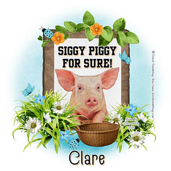 ARE YOU A SIGGY PIGGY? - Page 2 Siggy_44