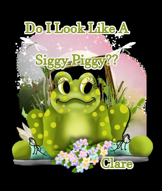 ARE YOU A SIGGY PIGGY? Siggyp85