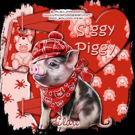 ARE YOU A SIGGY PIGGY? Siggyp87
