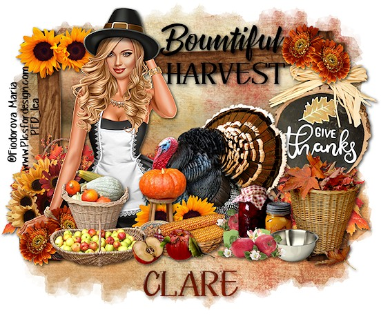 SHOW OFF THANKSGIVING TAGS - Page 2 Thanks29