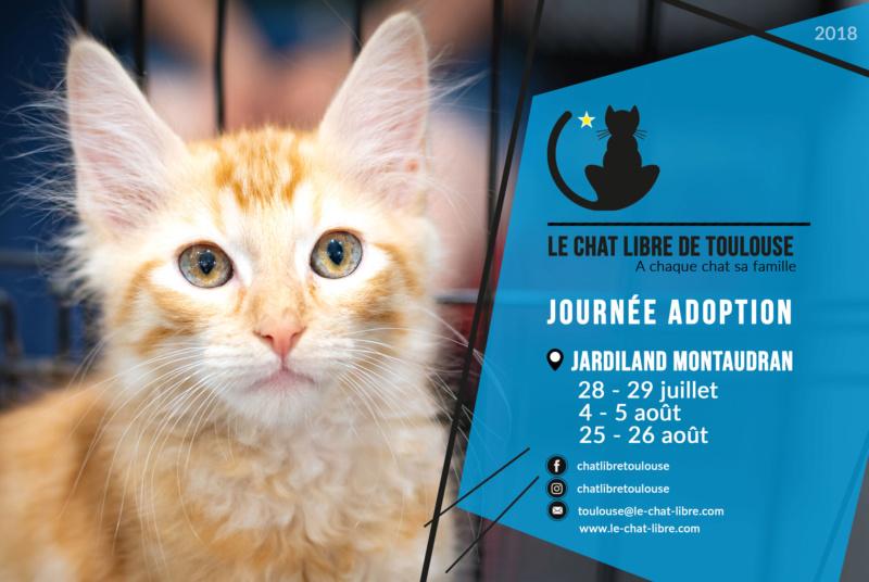 [ Adoptions ] Samedi 4 & dimanche 5 août 2018 : Jardiland Montaudran Journz11