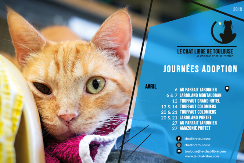 [Adoptions] Samedi 20 et dimanche 21 avril 2019 : Jardiland Montaudran Journz25