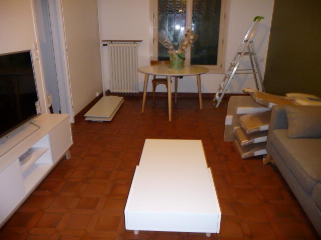 Conseil couleur canapé couleur table basse et disposition des meubles - Page 3 P1130513