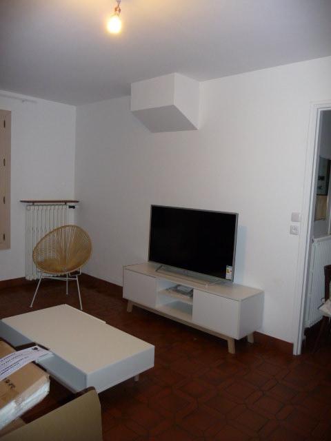 Conseil couleur canapé couleur table basse et disposition des meubles - Page 3 P1130514