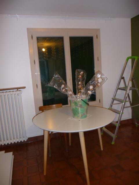 Conseil couleur canapé couleur table basse et disposition des meubles - Page 3 P1130516
