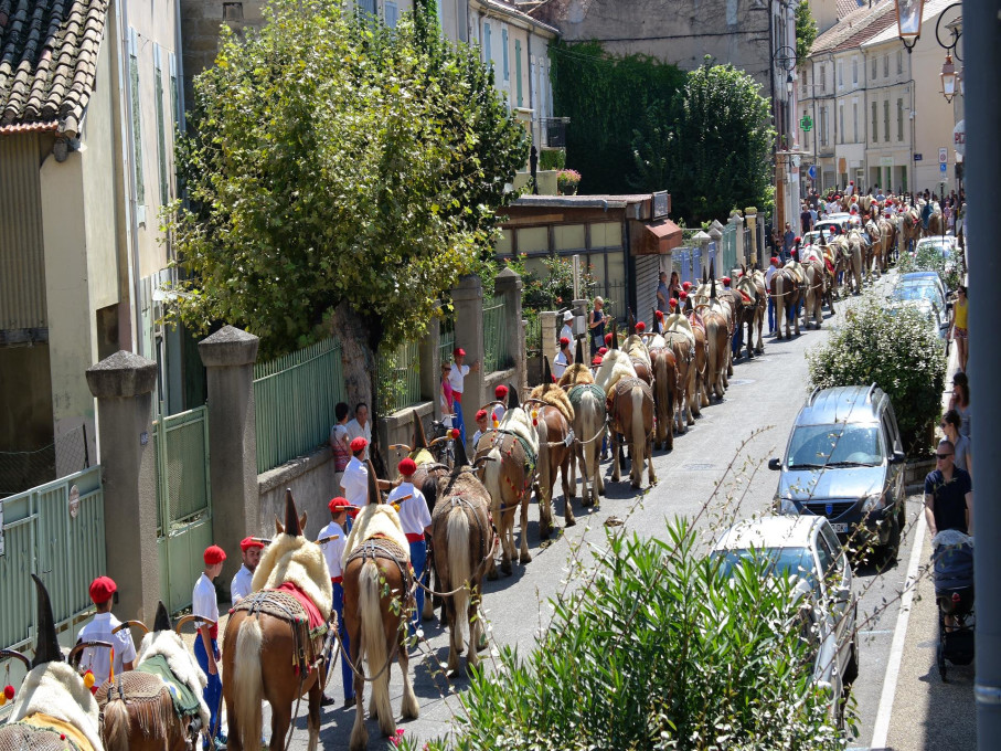 [Autres voyages/France] Traditions Provençales - Page 3 1_chev10