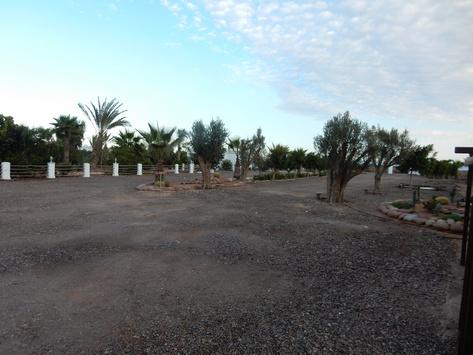 [Maroc Camp/Dernières nouvelles] Camping La Palmeraie Tifnit 23_bmp10