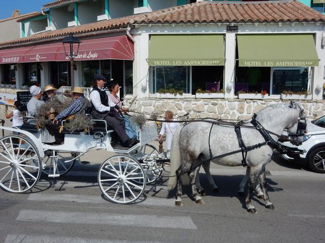 [Autres voyages/France] Traditions Provençales - Page 2 23_cal10