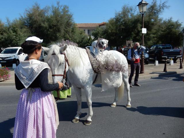 [Autres voyages/France] Traditions Provençales - Page 2 24_cav10