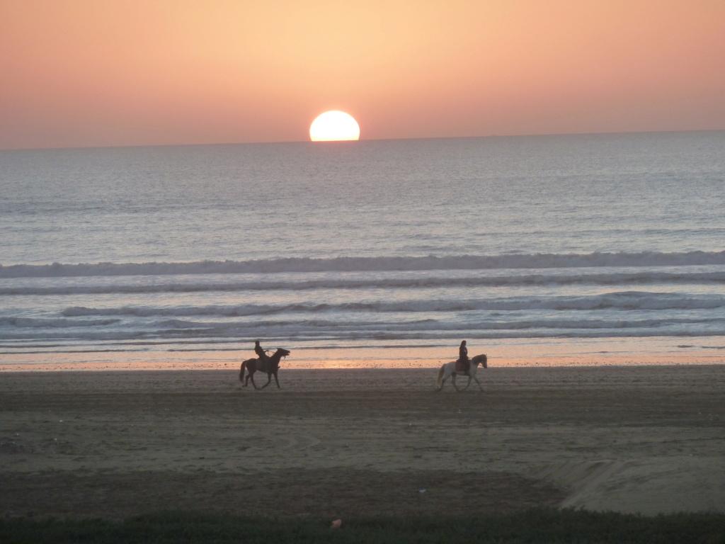 [nos beaux pays : la France, le Maroc et .....  le Monde] Couchers de soleil 92_cou10
