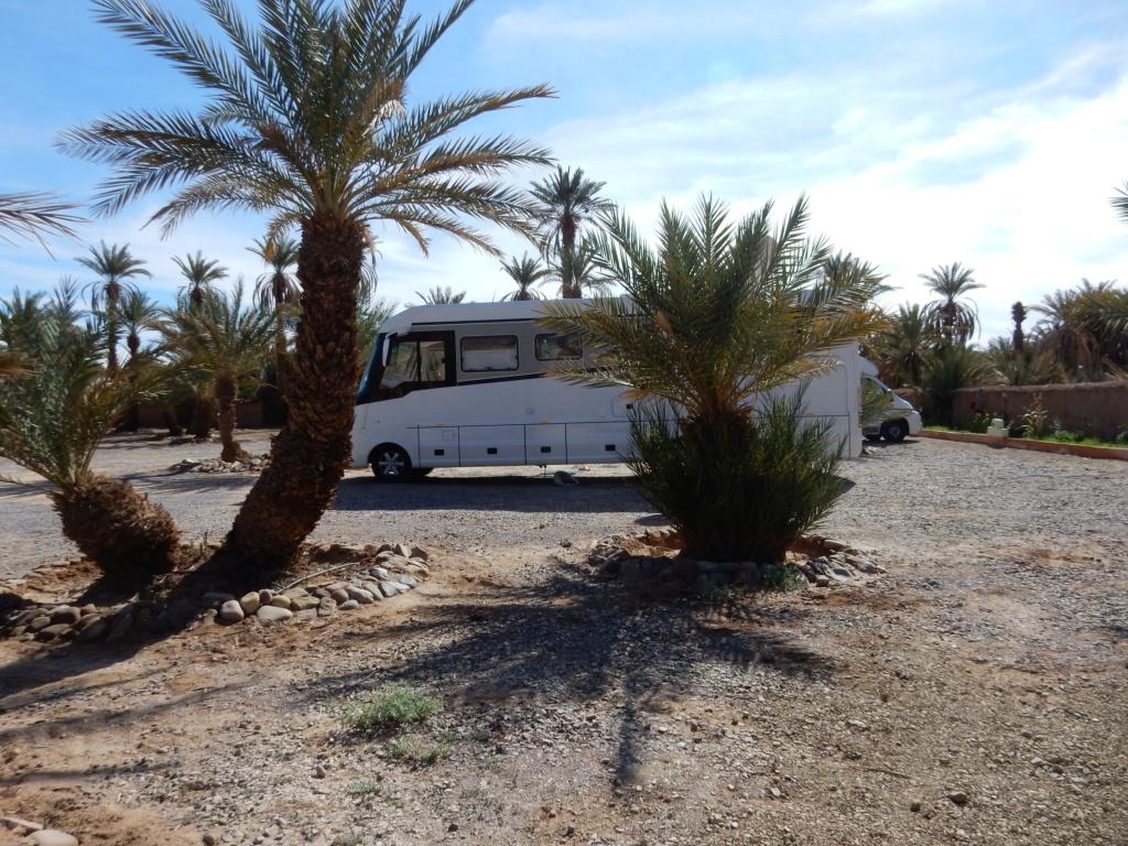 [Maroc Camp/Dernières nouvelles]  camping La Palmeraie à Foum zguid 9_les_11