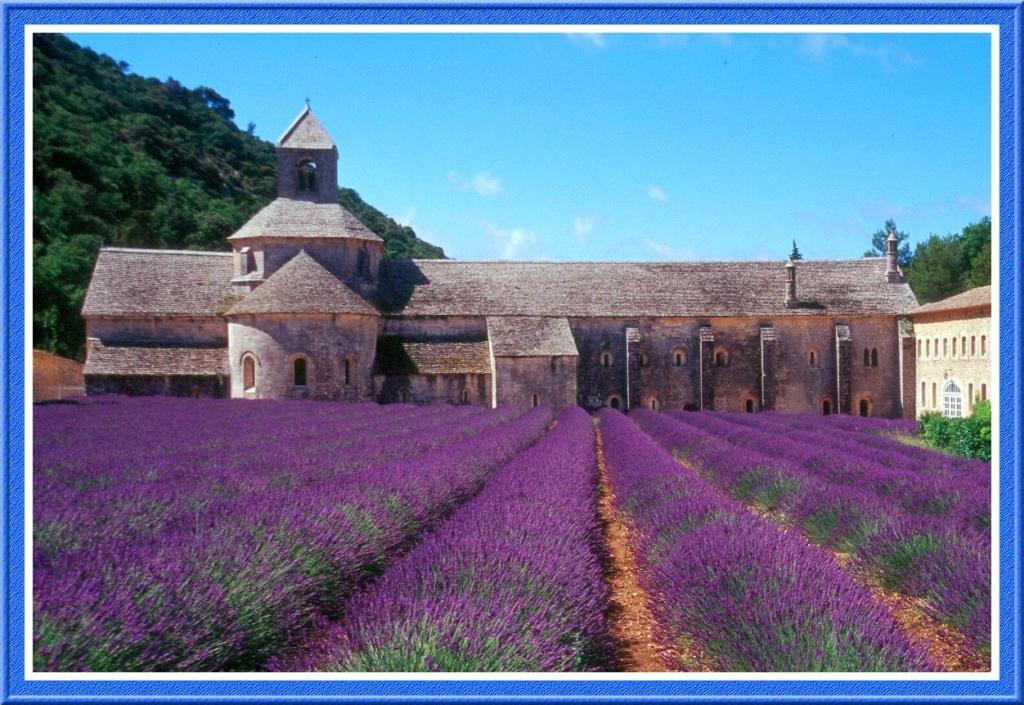[Autres voyages/France] Le Vaucluse une belle région Abbaye10