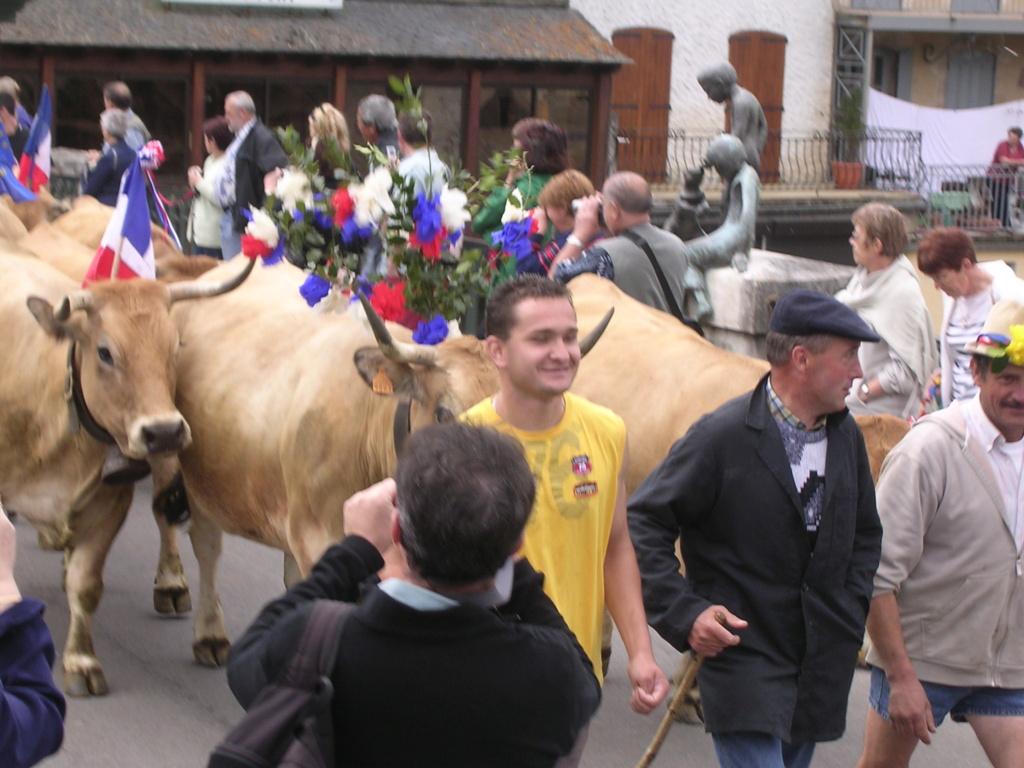 [Autres voyages/France] Marche de l'estive en Aubrac Dscn0910