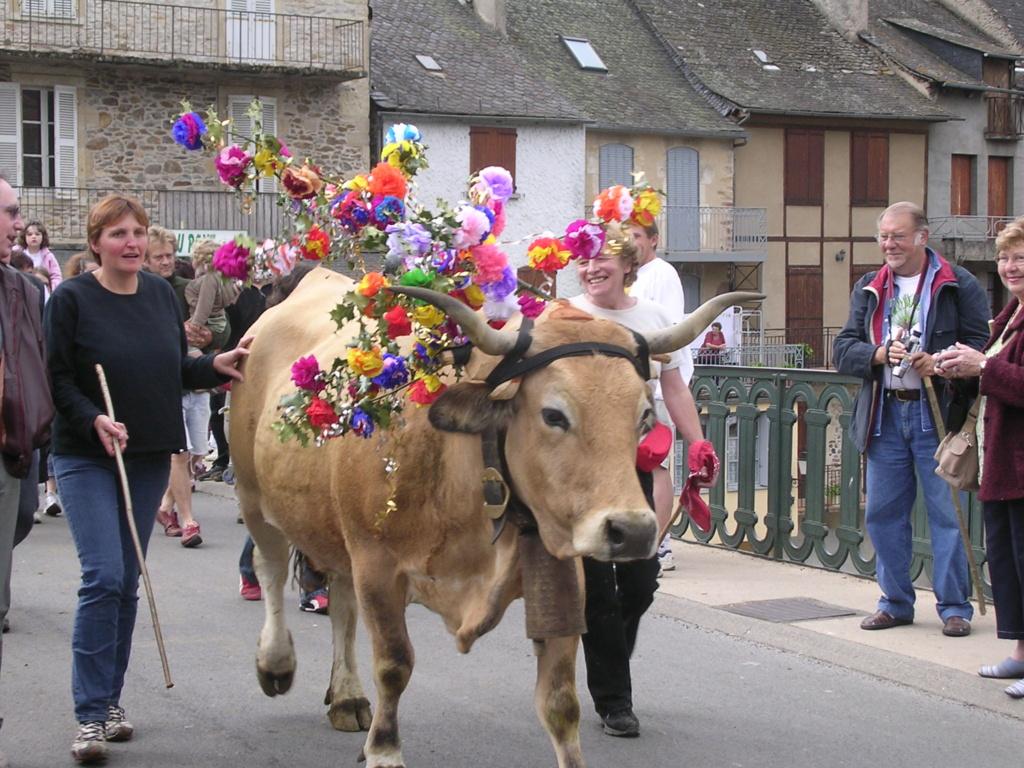 [Autres voyages/France] Marche de l'estive en Aubrac Dscn1010