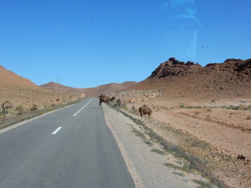 [Carburant, Routes, Police] etat des routes IGHERM à TALIOUINE Dscn5613