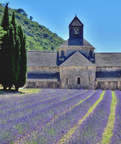 [Autres voyages/France] Le Vaucluse une belle région - Page 3 L_abba10