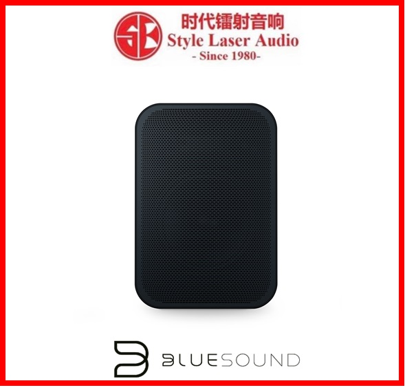 Bluesound Pulse Flex 2i Portable Wireless Multi-Room Music Streaming Speaker Es_189
