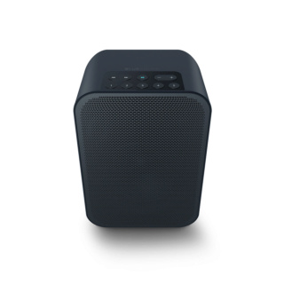 Bluesound Pulse Flex 2i Portable Wireless Multi-Room Music Streaming Speaker Es_2_c11