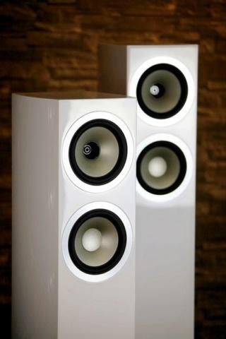 Tannoy Precision 6.2 Floorstanding Speaker Es_tan27