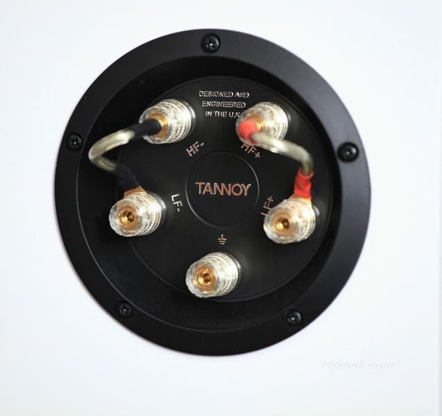 Tannoy Precision 6.2 Floorstanding Speaker Es_tan29