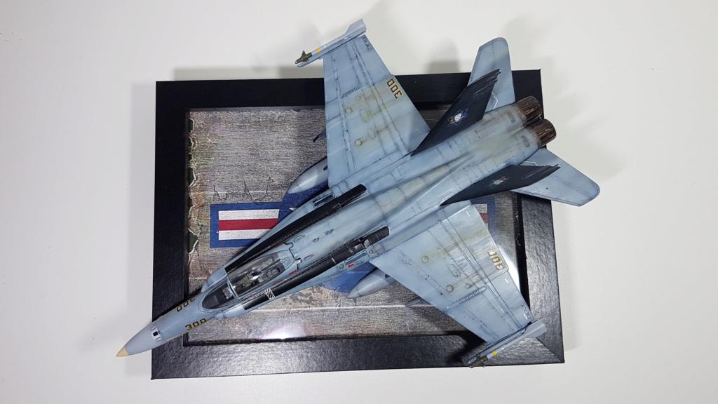 [Terminé] F-14 A Tomcat et F/A-18C Hornet - 1/72 20191010