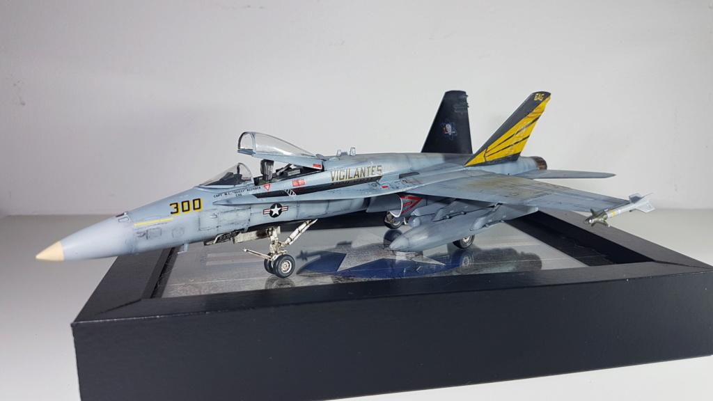 [Terminé] F-14 A Tomcat et F/A-18C Hornet - 1/72 20191011