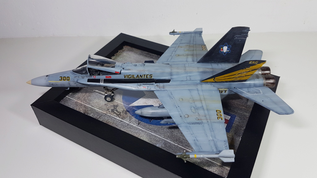 [Terminé] F-14 A Tomcat et F/A-18C Hornet - 1/72 20191013