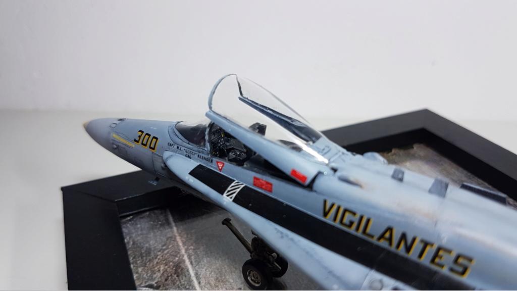 [Terminé] F-14 A Tomcat et F/A-18C Hornet - 1/72 20191014