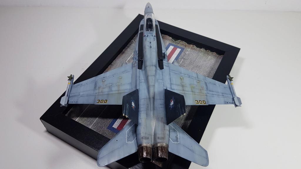 [Terminé] F-14 A Tomcat et F/A-18C Hornet - 1/72 20191015