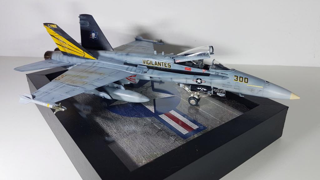 [Terminé] F-14 A Tomcat et F/A-18C Hornet - 1/72 20191016