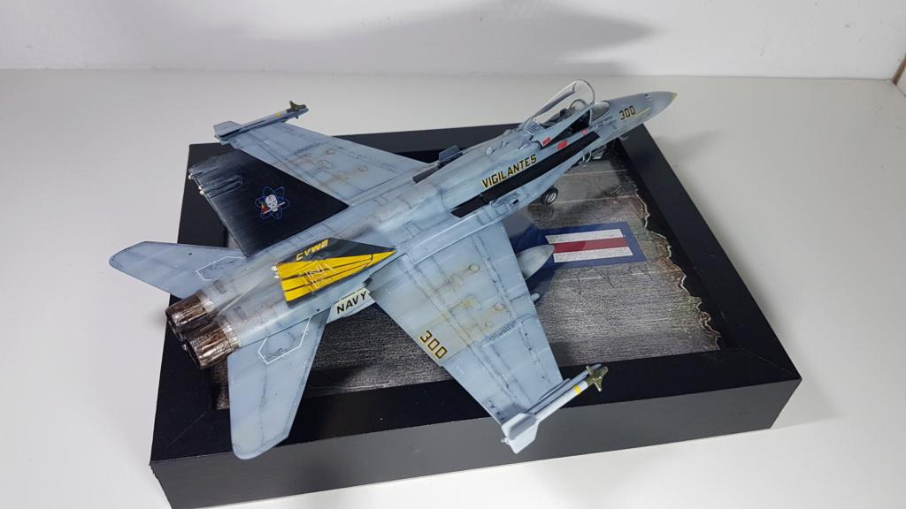 [Terminé] F-14 A Tomcat et F/A-18C Hornet - 1/72 20191017