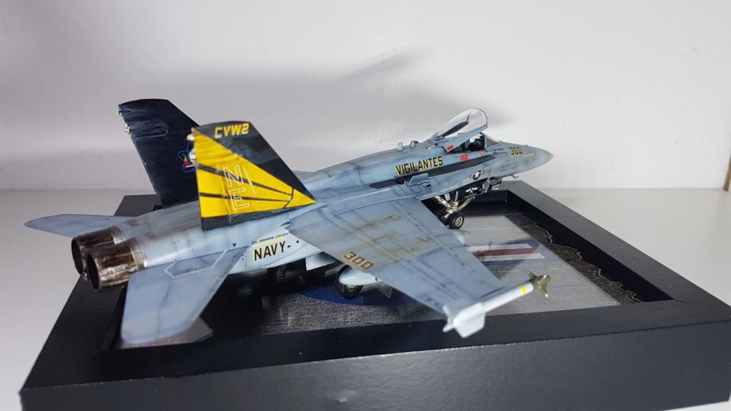 [Terminé] F-14 A Tomcat et F/A-18C Hornet - 1/72 20191018