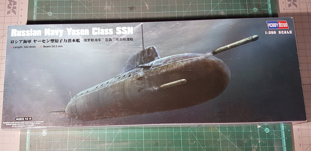 Quel sous-marin pour le GB 2020 - 1/350 20200148