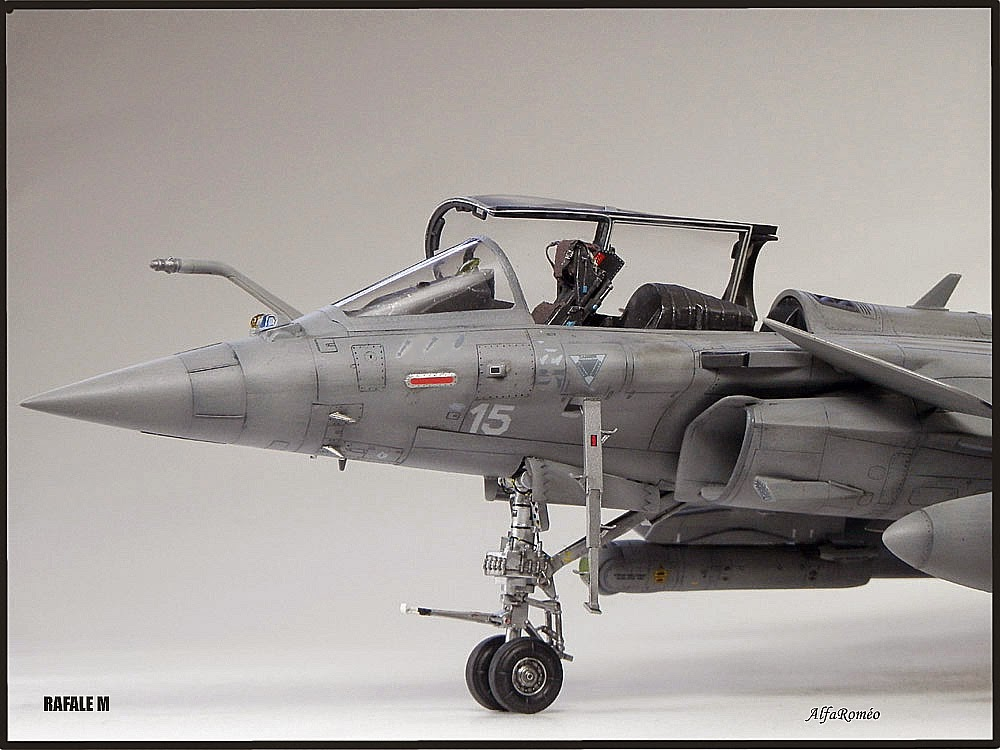 [Montage fini] Dassault Rafale M - 1/72 - Page 2 P3181910
