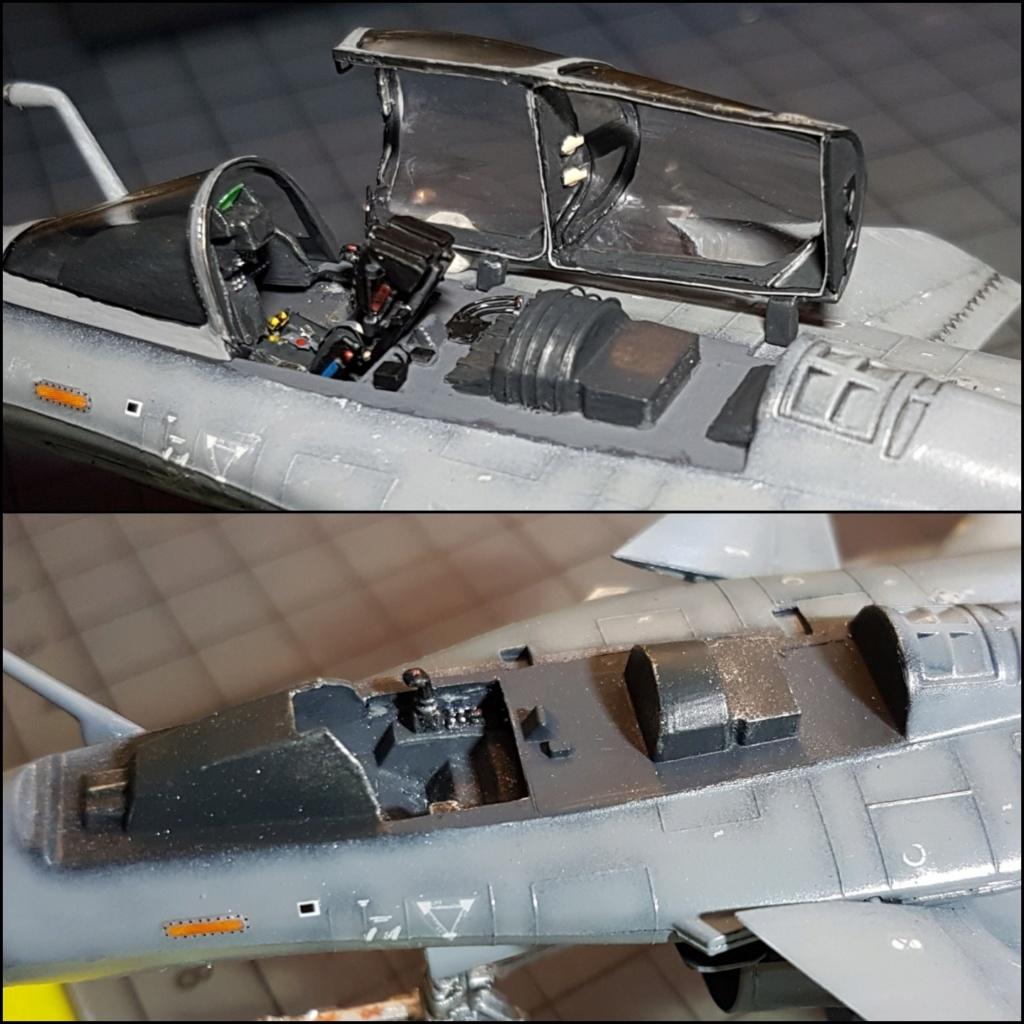 [Montage fini] Dassault Rafale M - 1/72 - Page 3 Picsar17