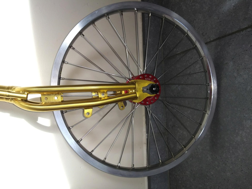 Projet Xenophon:  installation d'une fourche et triangle Vostok + Rohloff Son1f10
