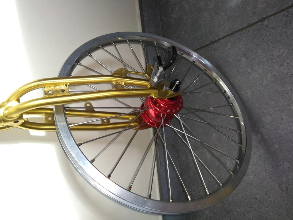 Projet Xenophon:  installation d'une fourche et triangle Vostok + Rohloff Son2f10