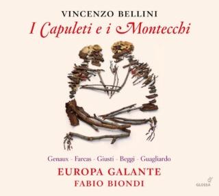 Opéras romantiques italiens sur instruments d'époque 61pj0f10