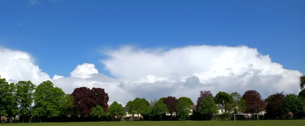 The Weather Thread - Page 48 20190511