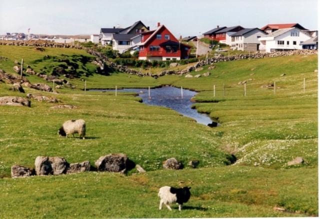 Mein Sammelgebiet: Färöer Inseln Fziroe11
