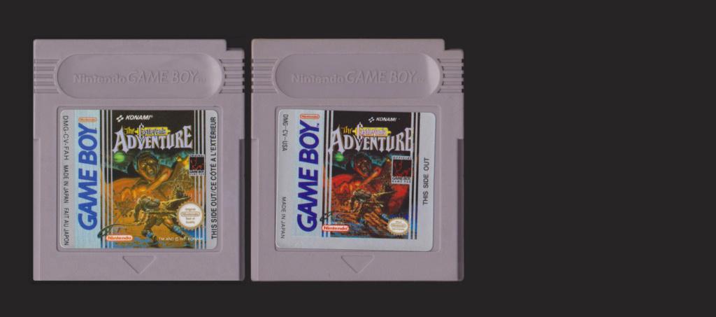 Jeux Gameboy : cartouches et variantes Castle10